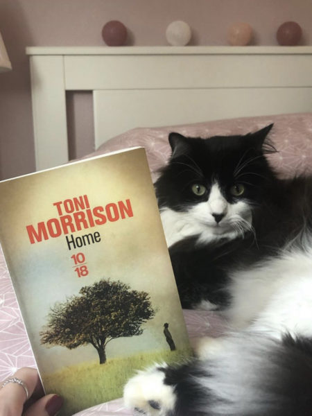 Home – Toni Morisson